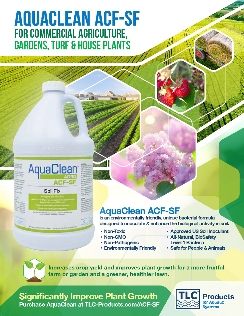 AquaClean ACF-SF Flyer